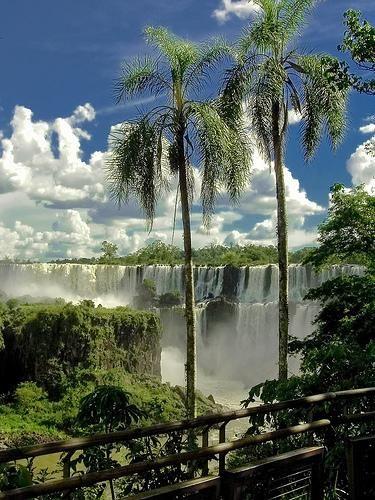 Игуасу  парк Игуасу, Аргентина