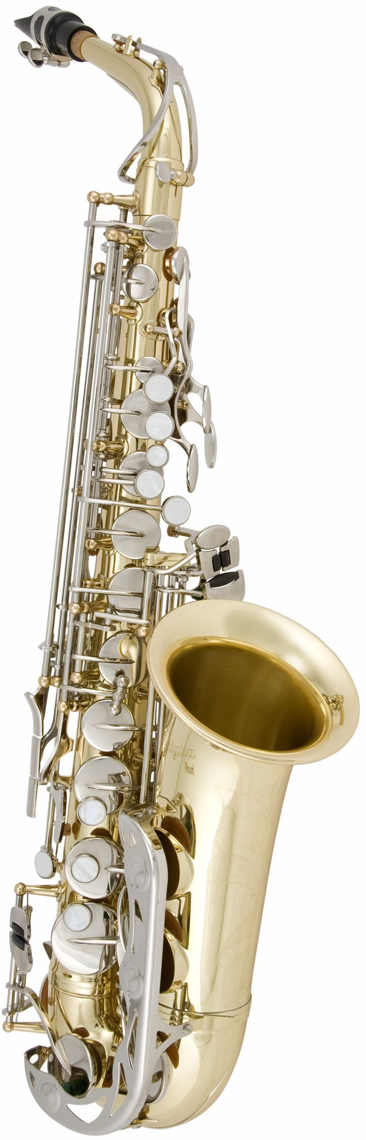 What is the easiest brass instrument to learn