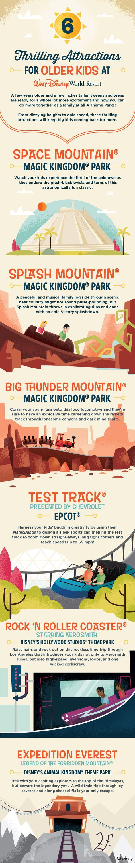 Your older kids will love these thrilling attractions on your Walt Disney World vacation! From Space Mountain to Test Track to Expedition Everest, there's something for every tween and teen!