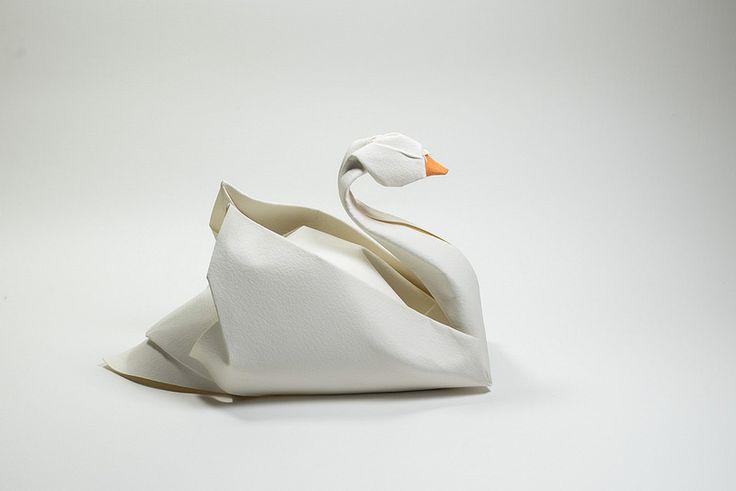 Swan 2015   by ORI_Q