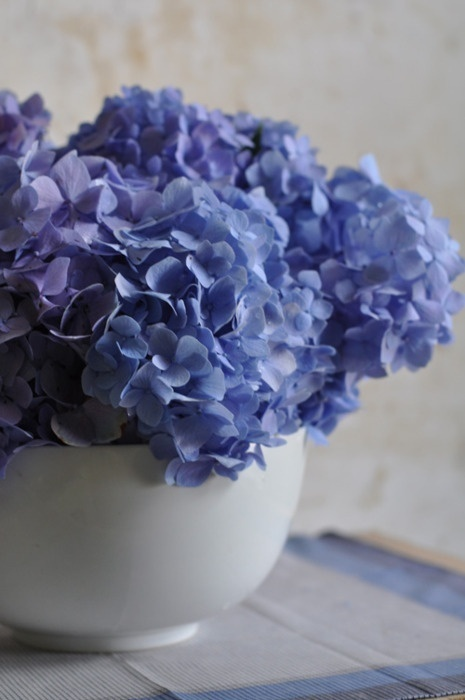 I love blue hydrangeas and had them in my wedding bouquet.