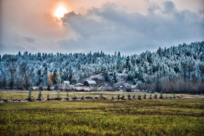 First Snow, Salmon Arm, BC, Canada - photo by Neil Millar