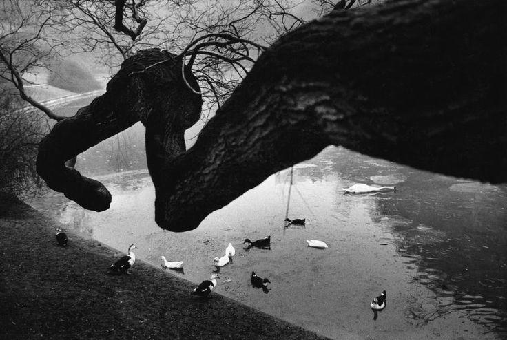 © Richard Kalvar/Magnum Photos FRANCE. Paris. Buttes Chaumont. 1971.