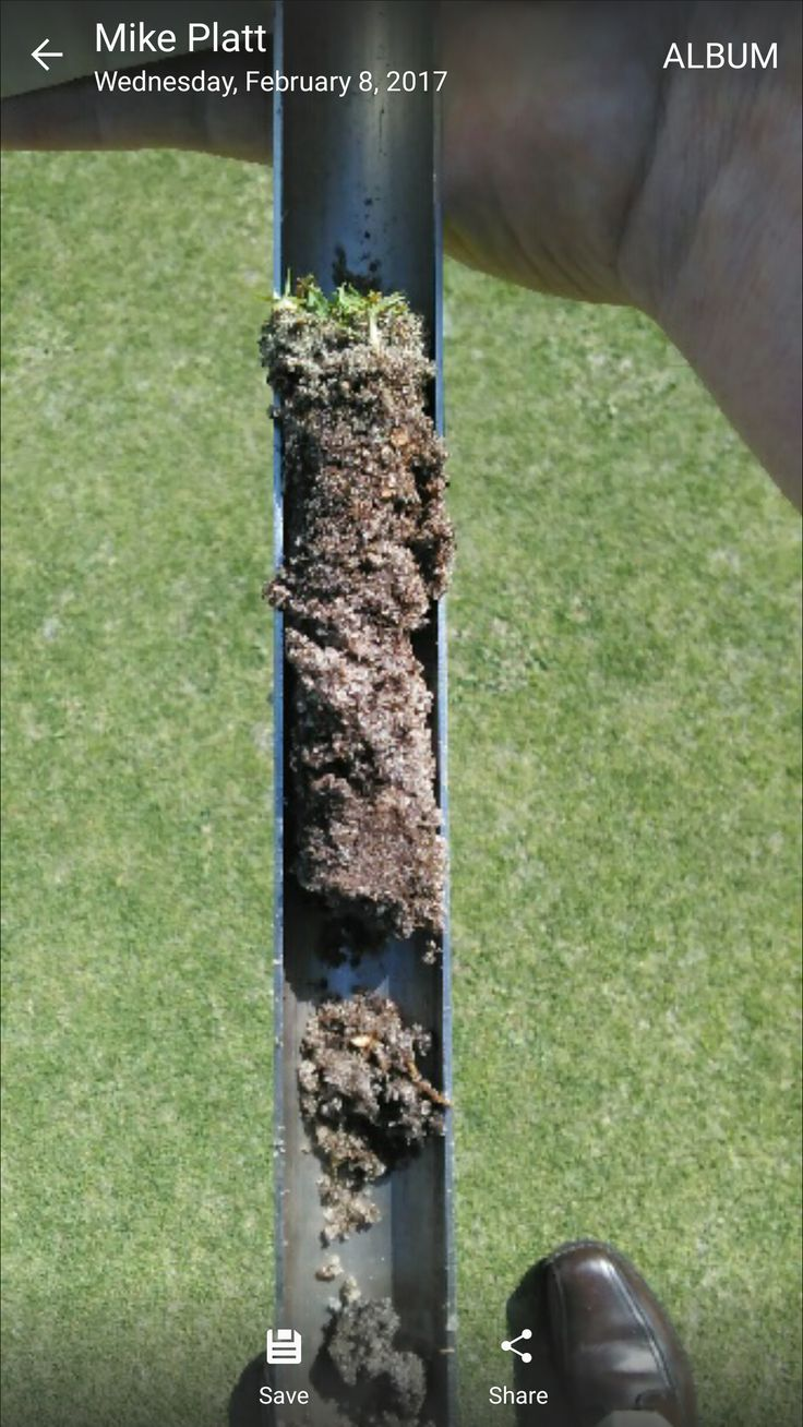 We take core samples to look at the health of grass roots. Deep roots = healthy turf!  www.ogmlandscape.com