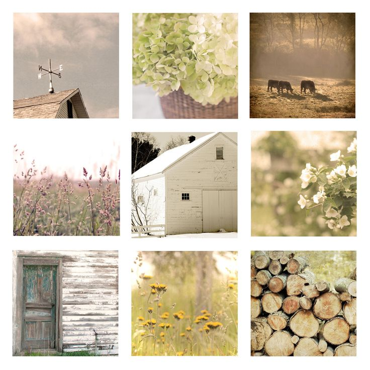 """Home Decor Set of 9 Country Living Photos, 8""""x8"""" each, soft, golden, yellow, farmhouse, rustic, cottage chic, floral, barn, dreamy. $110.00, via Etsy."""