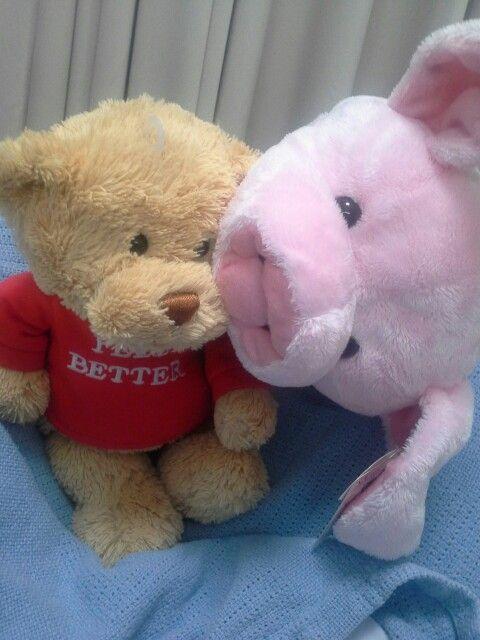 NI Piggy lg nyobain kuping Da Bear...  Hmmm furryy fluffy...
