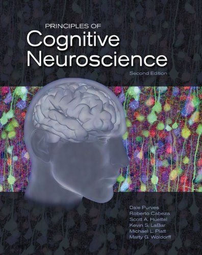 Principles of cognitive neuroscience / Dale Purves ... [et al.]