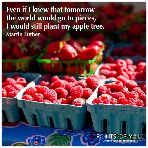 even if i knew that tomorrow the world would go to pieces i would still plant my apple tree