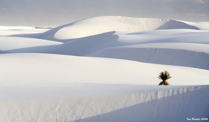 White Sands National Monument. Photo by Ian Parker