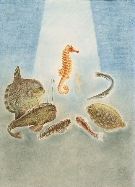 stilllifequickheart: Olli Lyytikäinen Another Kind of Fish 1970