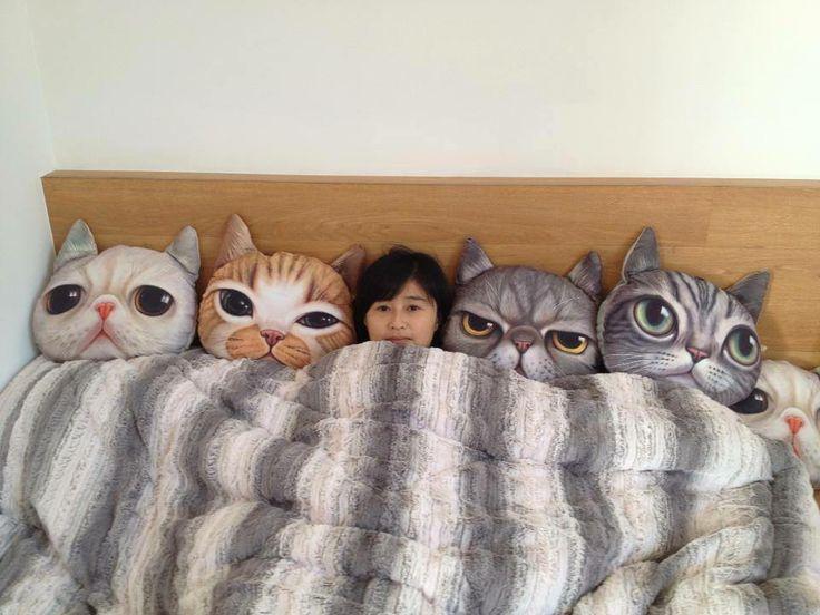 137 Best Cat Cushions Images On Pinterest Cat Pillow