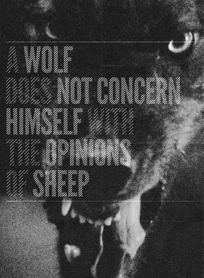 A wolf does not concern himself with the opinions of sheep.:
