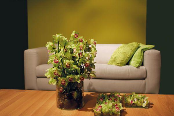 I colori pastello sono adatti per la camere dei bambini, ed anche per le zone poco luminose, come ad esempio corridoi e disimpegni.