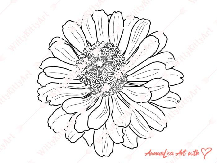 Coloring Page For Adults Marigold Flower Coloring Colouring Page