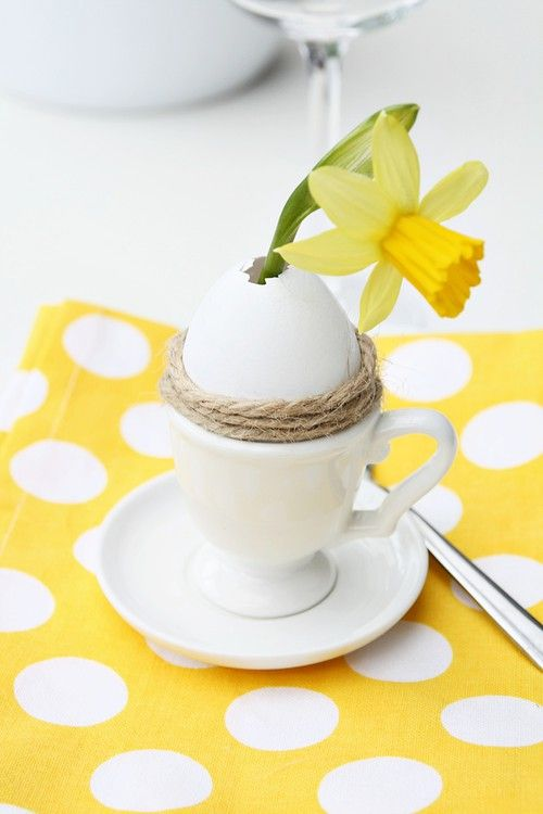 Love the yellow dotty placemats