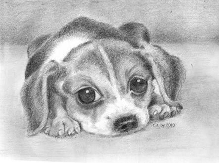 Рисунки милых собачек для срисовки карандашом