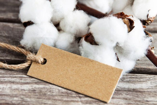 15 Cotton Gift Ideas for your 2nd Wedding Anniversary