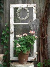 Schneesternchen: Gartendeko