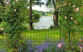 Обои цветы, сад, Oxfordshire Gardens, деревья, кусты, розы, Великобритания, зелень, изгородь, трава, река