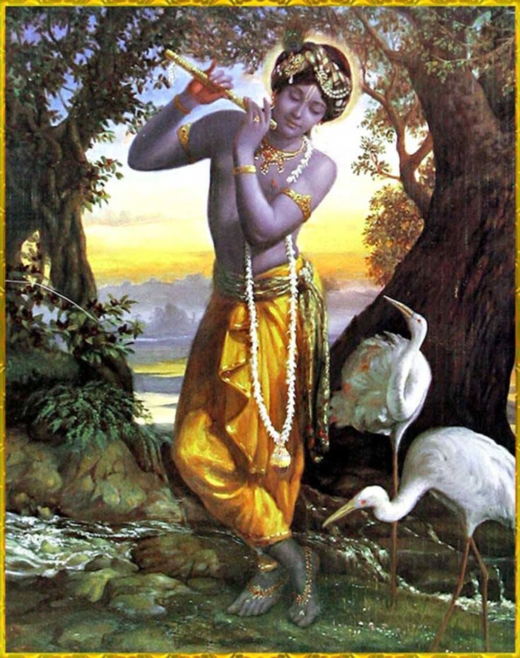 krishna and shivas relationship