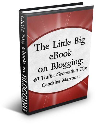 Review of The Little Big eBook on Blogging: 40 Traffic Generation Tips