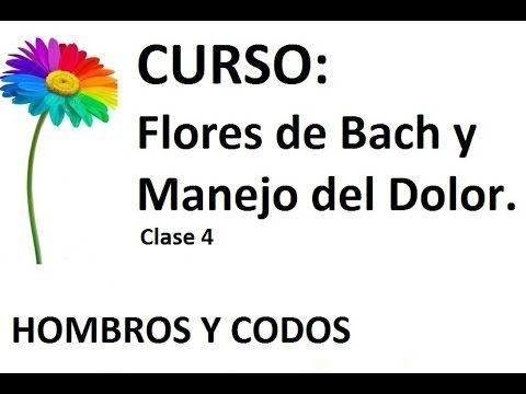 Fibromialgia y Flores de Bach - Dolor hombros y codos (4- 40)