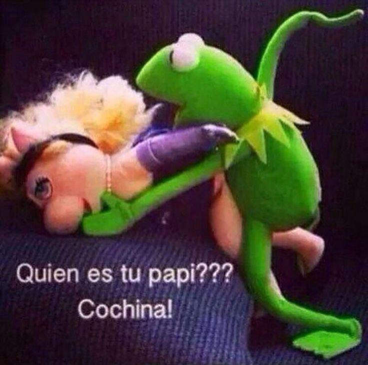 39 Best Muppet Quotes Lol Images On Pinterest: 40 Best Meme De La Rana Rene Images On Pinterest