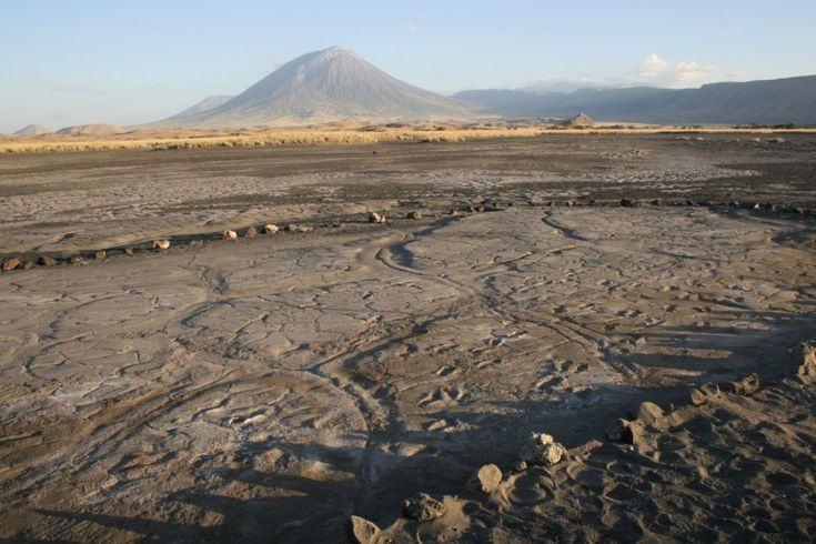 Scientists discover hundreds of footprints left at the dawn of modern humanity - The site in northern Tanzania is the largest assemblage of ancient human footprints in Africa and one of the biggest on the planet  The Washington Post