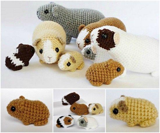 Newborn Guinea Pigs Free Crochet