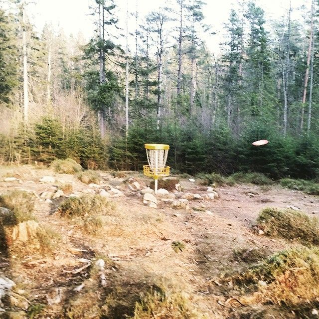 Ny månad, nya kast! #frolf #frolfing #discgolf #discgolfsweden #frisbeegolf #frisbee #ymer