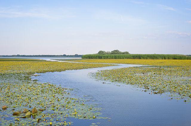 Tisza-tó a csónakból
