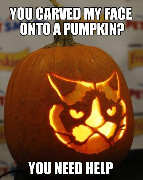 grumpy cat pumpkin stencil - Funny Cat Halloween