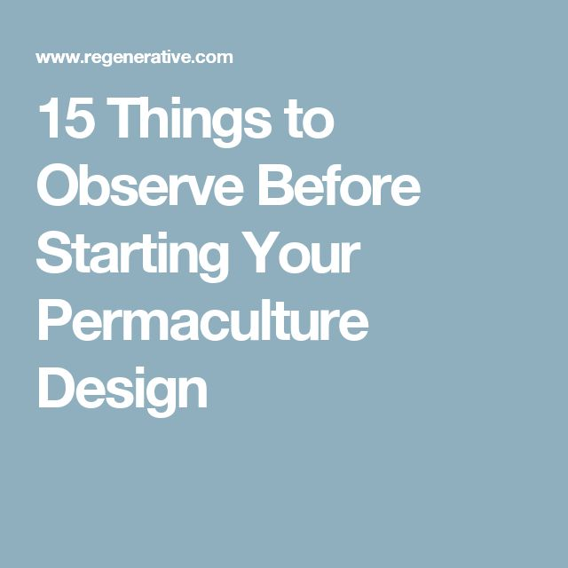 15 Things to Observe Before Starting Your Permaculture Design