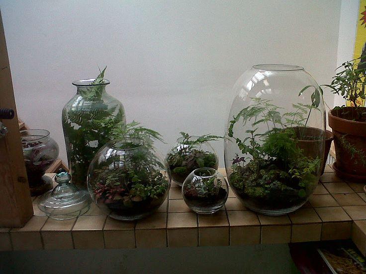 grow little