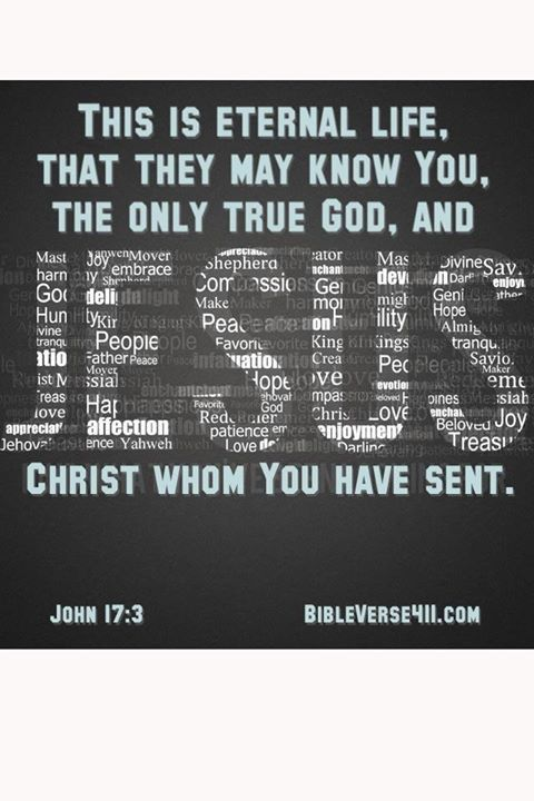 This is eternal life, that they know You, the only true God, and Jesus Christ whom you have sent.  John 17:3. Bible Verse 411