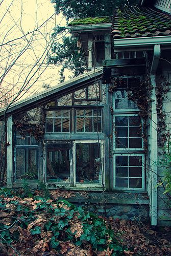 Abandoned and derelict greenhouse.