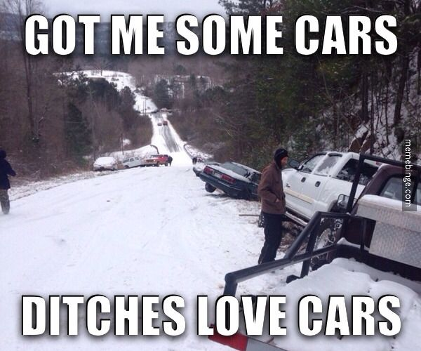 Ditches love cars!❤️