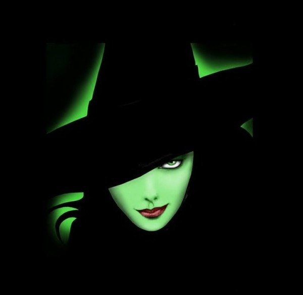 Wicked......A great read and awesome musical.