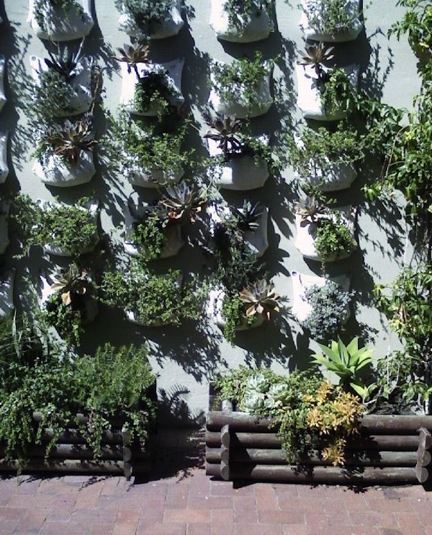 38 best Vertical Gardens images on Pinterest Vertical gardens