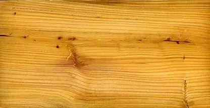 Древесина тиса имеет извилистые годичные слои, узкую заболонь желтовато-бел...