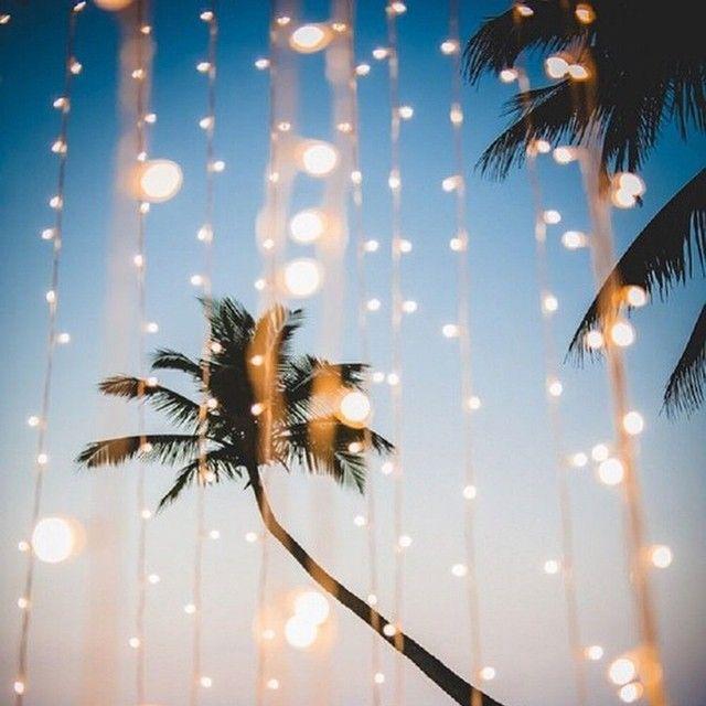 tropical christmas PURETAN