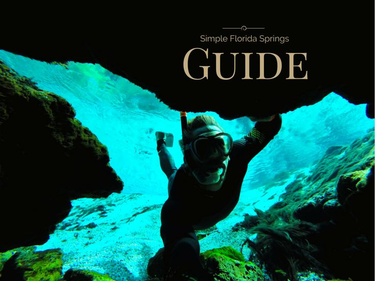 Florida Springs Guide - http://tulasendlesssummer.com/a-simple-guide-to-some-of-the-most-amazing-springs-in-florida/