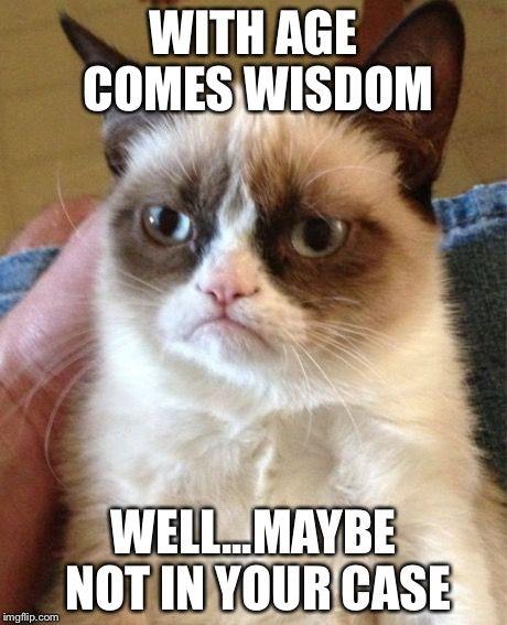 c217171934e41d9a43c4bbbf6898f5e9 grumpy cat quotes grumpy cat meme 56 best grumpy cat birthday images on pinterest grumpy cat, funny