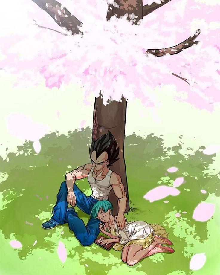 Best 20 vegeta and bulma ideas on pinterest - Goku e bulma a letto ...