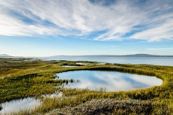 Langebaan lagoon, West Coast National Park - South Africa. #langebaan #lagoon