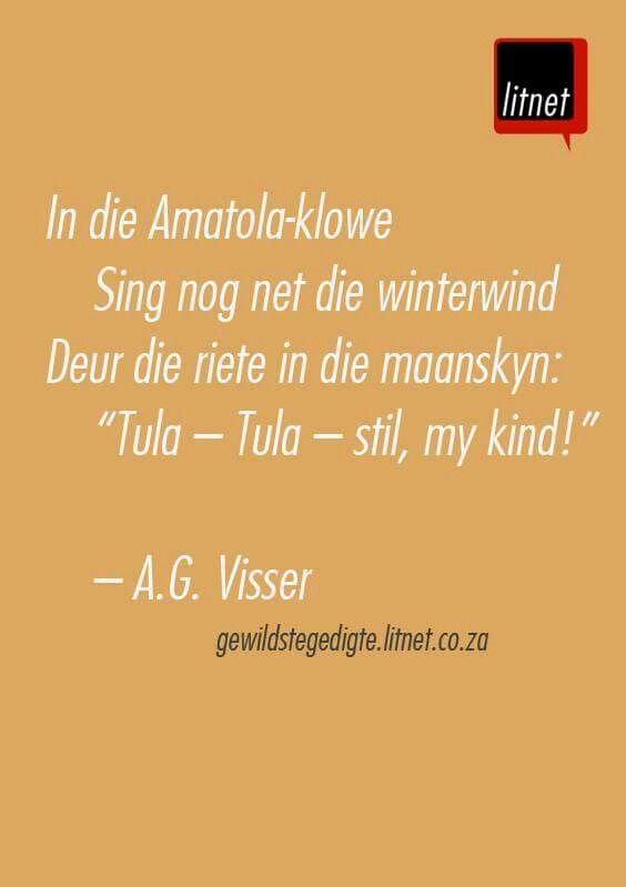 A.G. Visser*