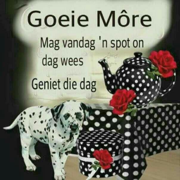 Good Morning Everyone In Afrikaans : Best mooi woorde images on pinterest