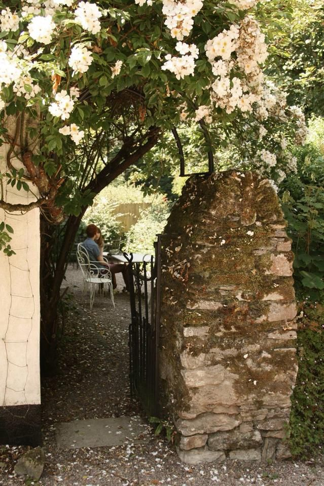 View from the gate to the tearoom terrace - lovely spot for lunch or afternoon tea. Stephen Pearce Pottery.