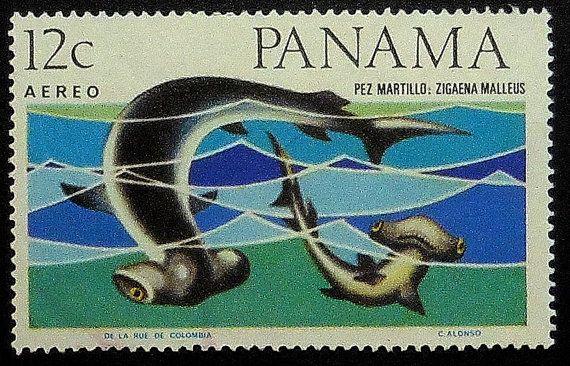 Great hammerhead shark Pez martillo Panama -Handmade Framed Postage Stamp Art 11770