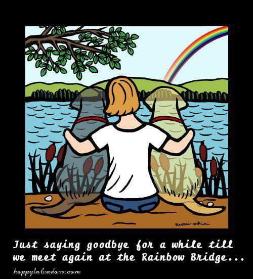 Until we say goodbye lyrics